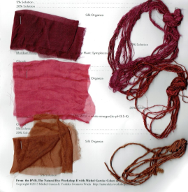 Cochineal dyed Choshi Skeins on the left; Photo Credit: Anu Ravi
