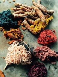 Natural dyes - Boruca, Costa Rica