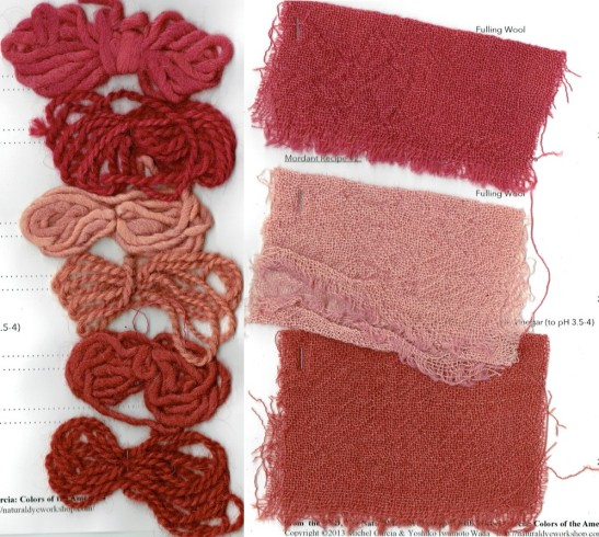 Final samples of cochineal